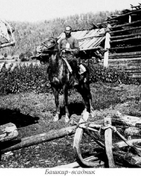 Слово об утерянном внутрипородном типе башкирской лошади
